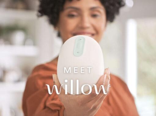 Willow / Meet Willow